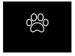 zwierz kopia_MALE